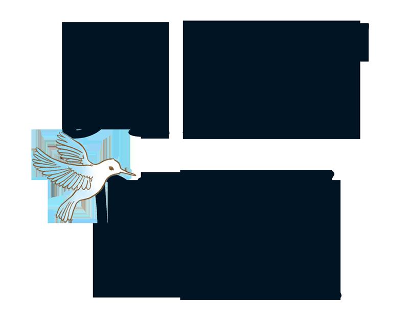 tytul-bialy-ptak
